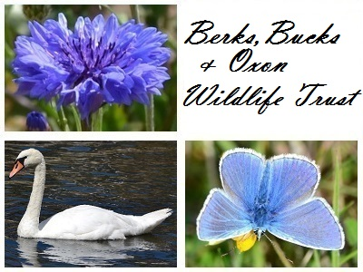 Berks, Bucks and Oxon Wildlife Trust at Abbey Fishponds